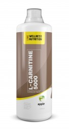Wellness Line L-Carnitine 5000 (1000 мл)